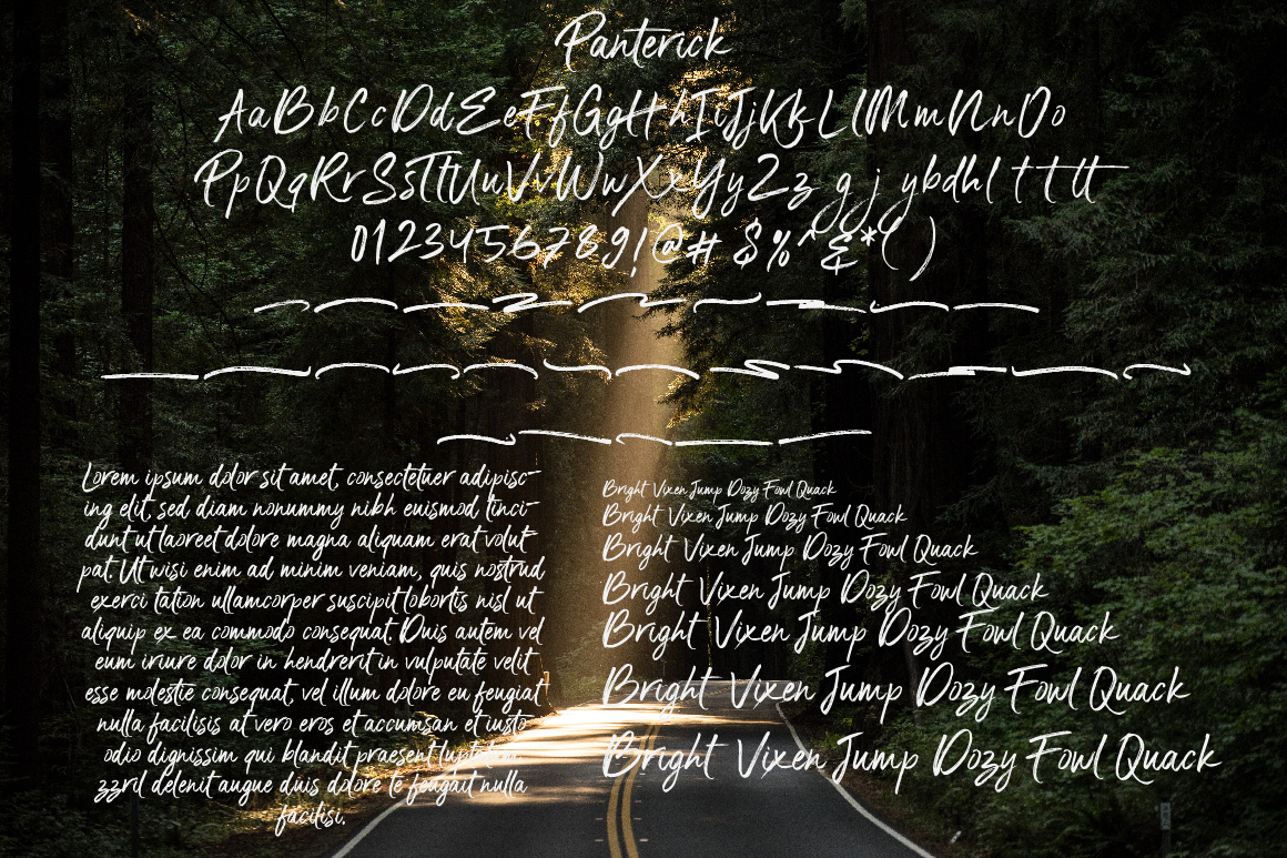 Panterick // Handwritten Font example image 7