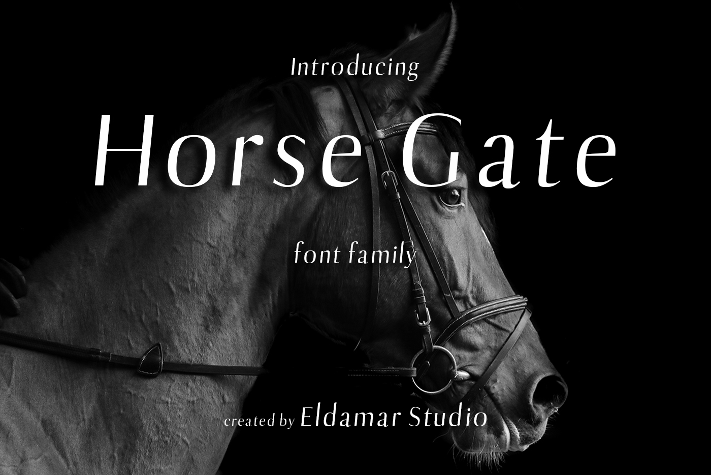 Horse Gate Font example image 1