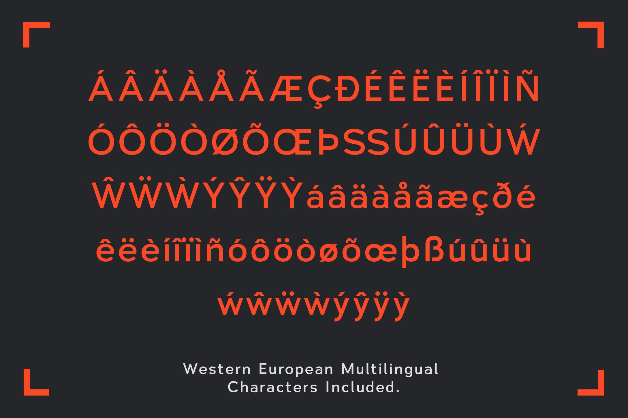 Vitala - A Workhorse Sans-Serif example image 6