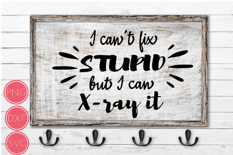I Can't Fix Stupid But I Can X-Ray It SVG, Xray Tech gifts example image 1