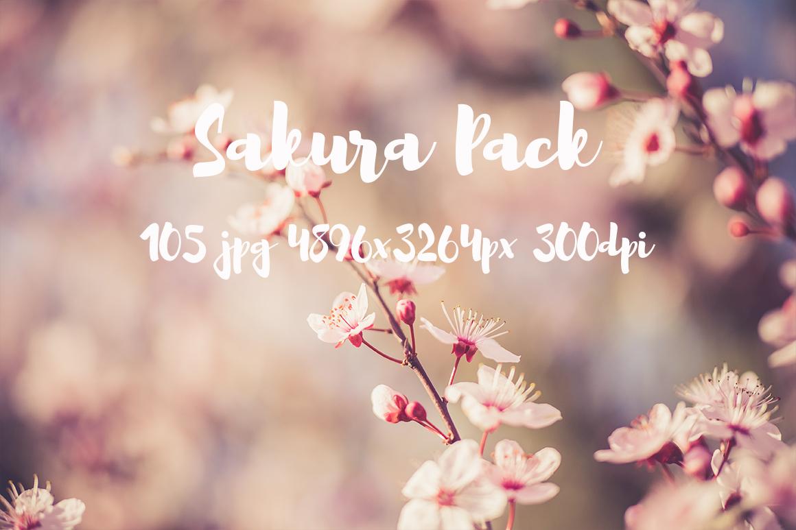 sakura photo pack example image 4