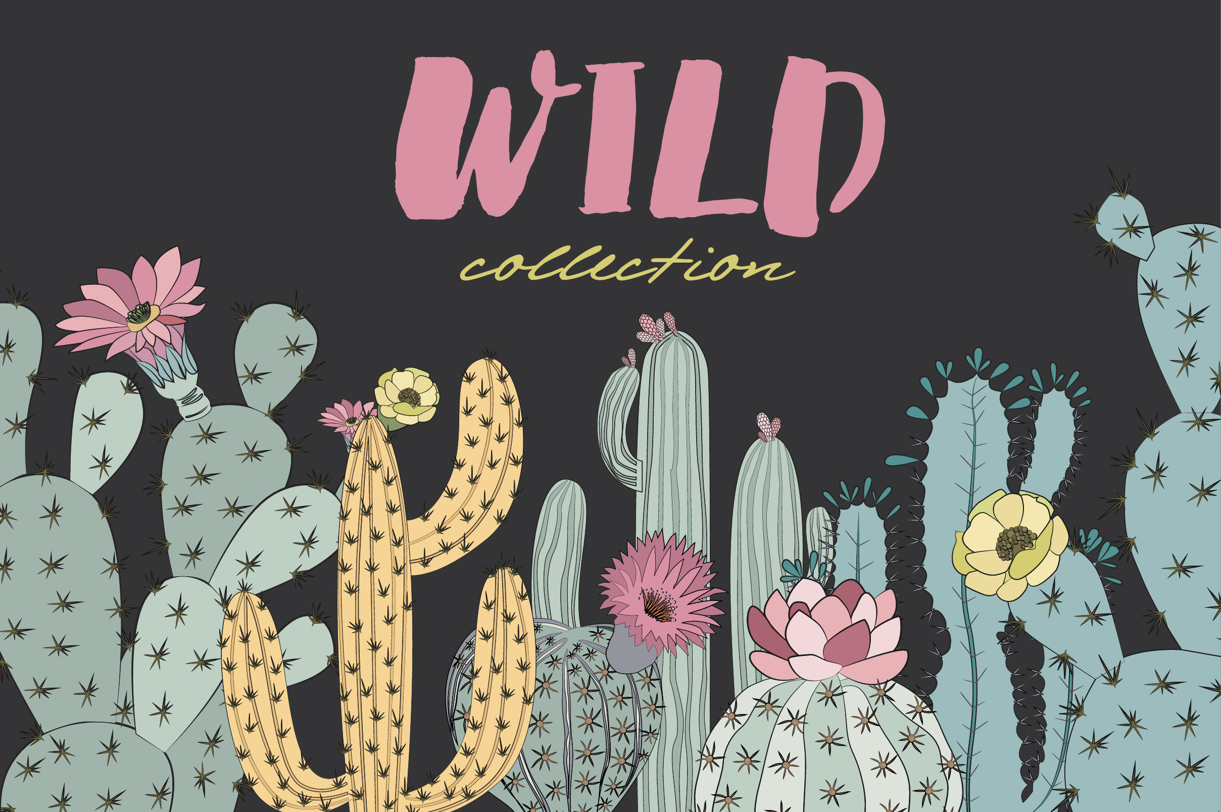 Wild & Free cactus collection example image 9