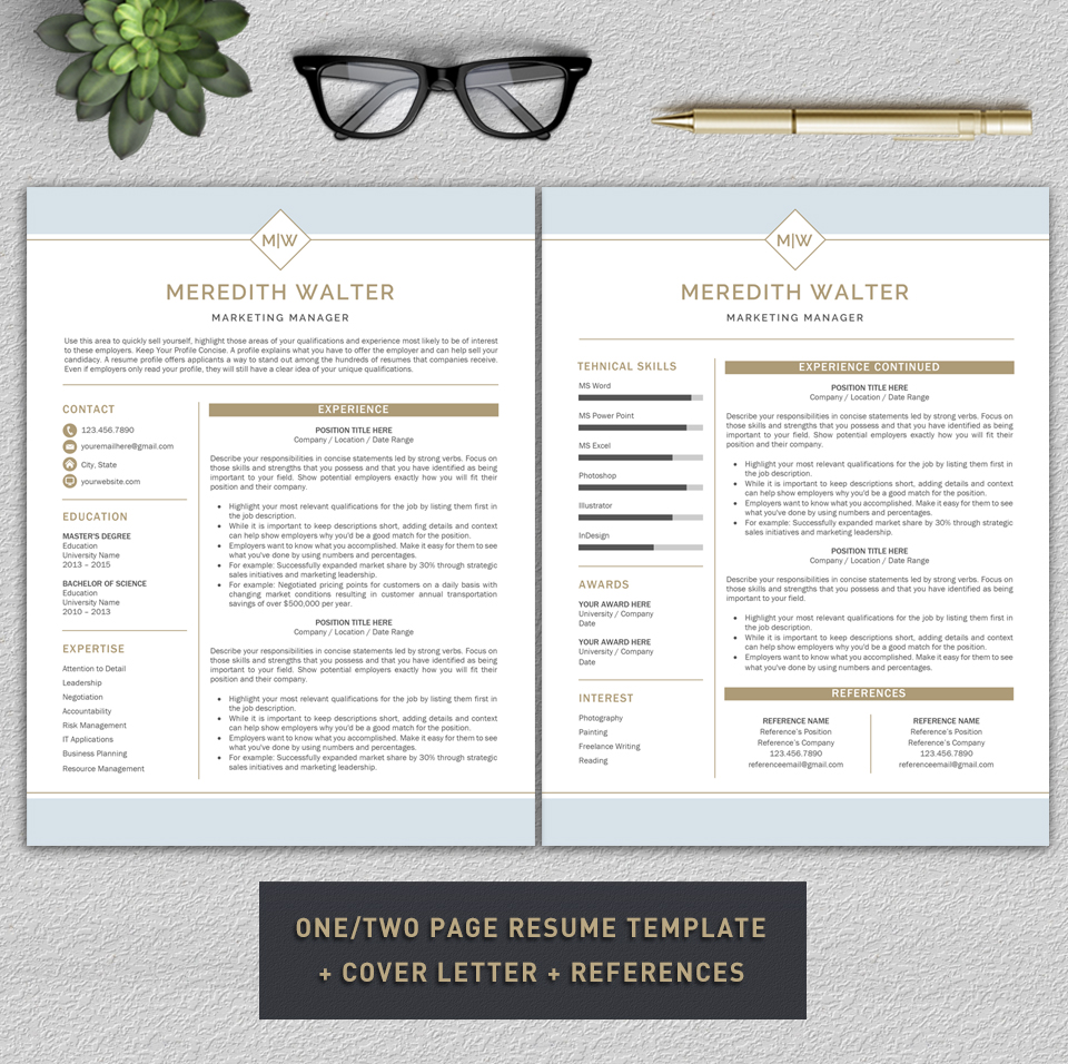 Resume Template / CV Templates, Professional Resume Template example image 4