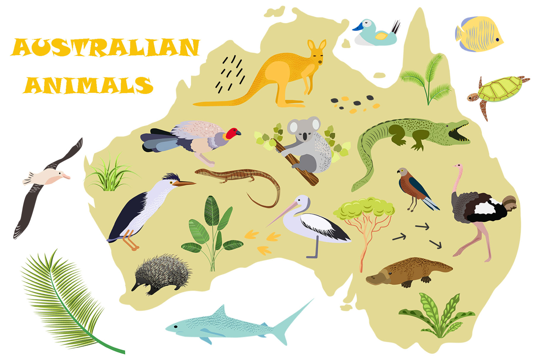 Australian Animals example image 1