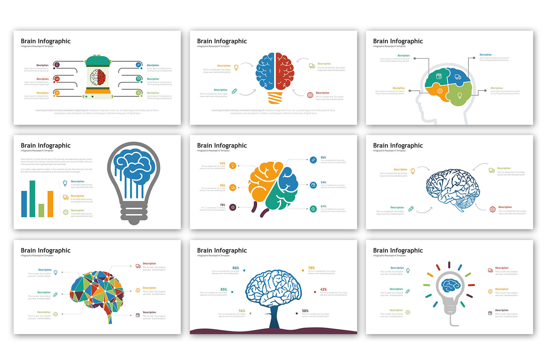 Brain Presentation - Infographic Template example image 2