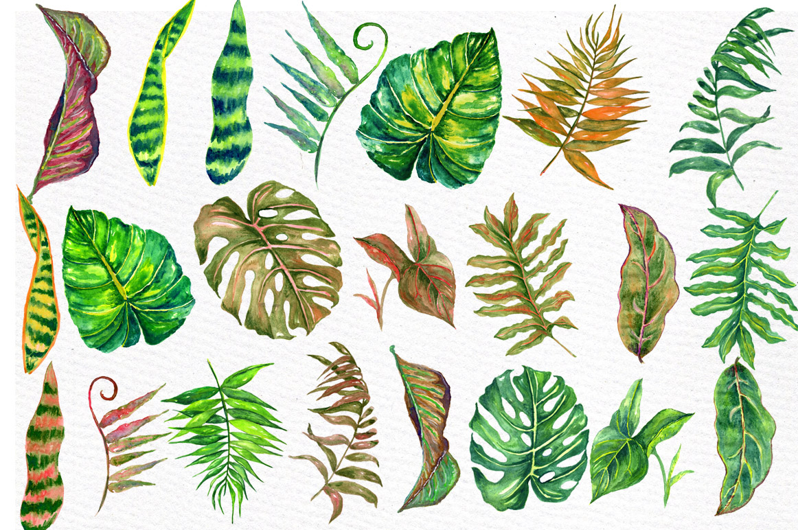 Tropical watercolor leaves example image 2