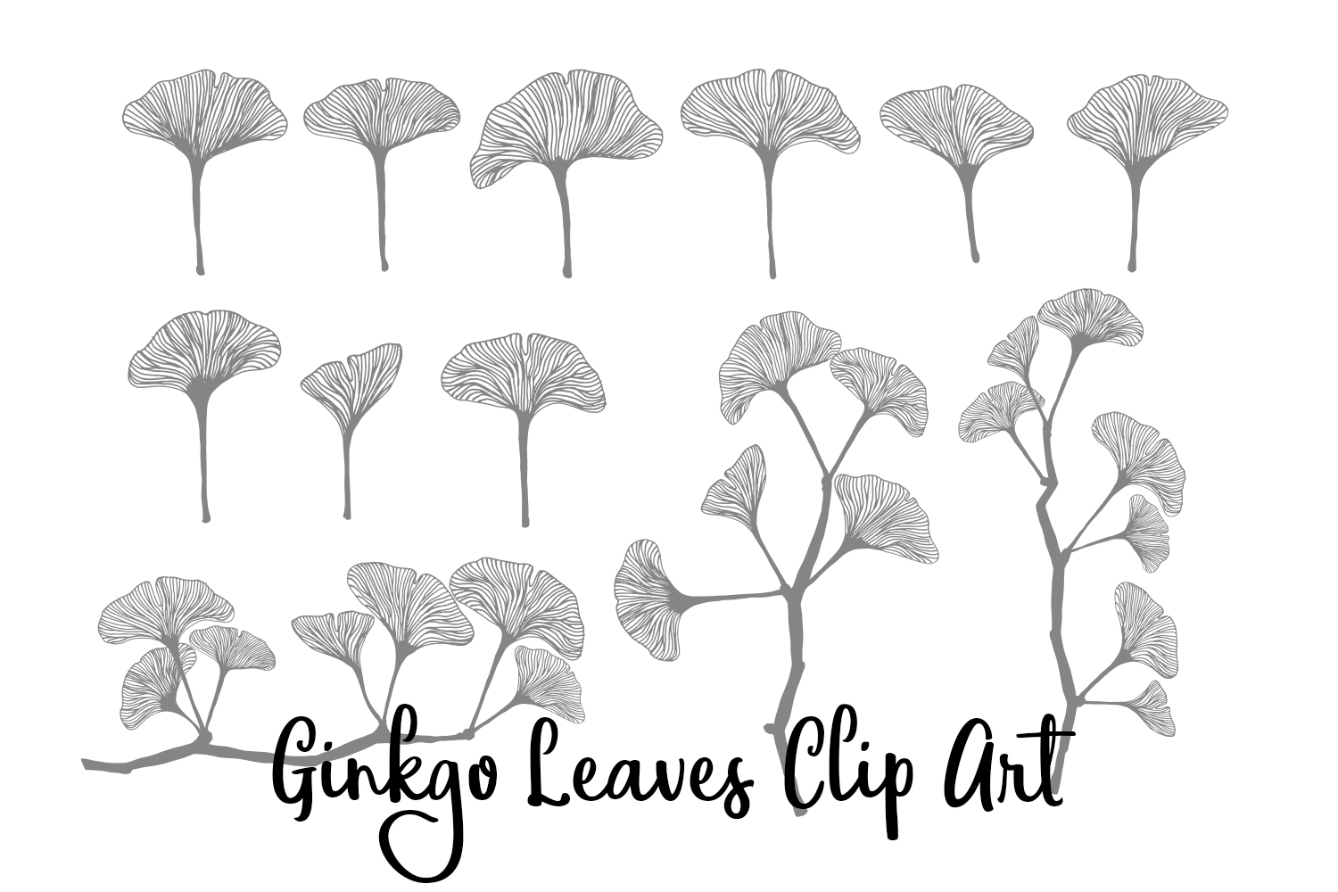 Ginkgo Leaves Clip Art, Vectors, PNGs and Digital Brushes example image 2