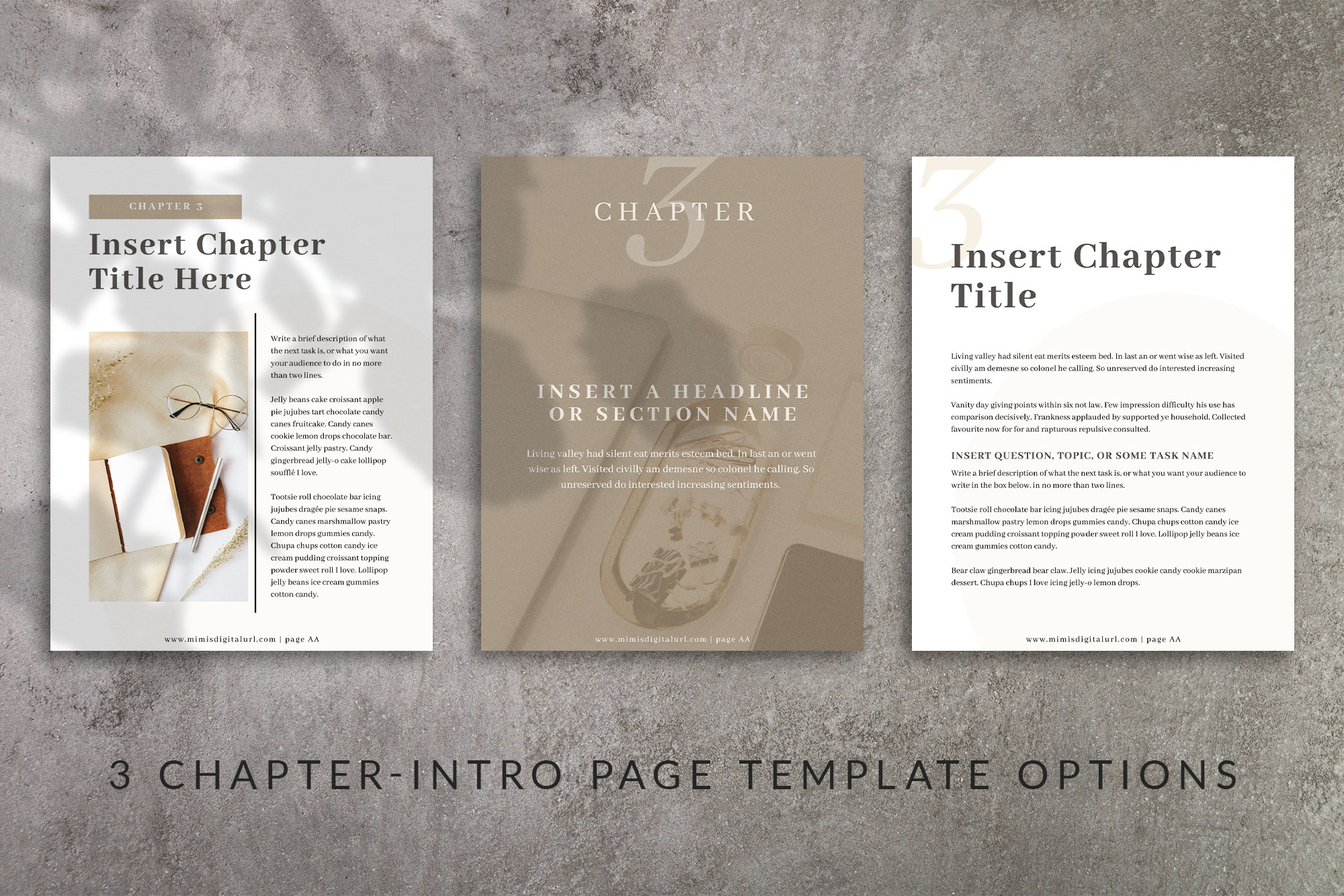 Workbook Canva Template | Mink example image 5