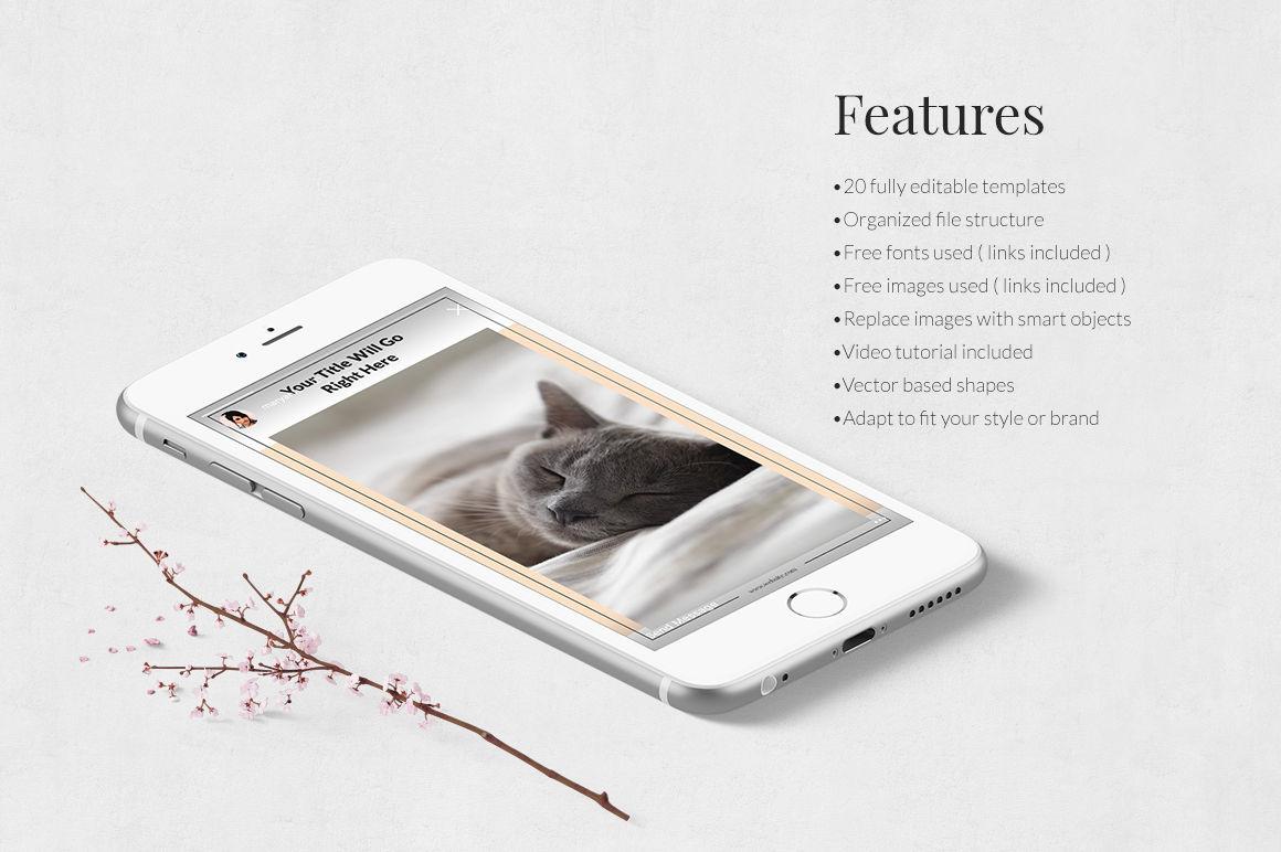 Cats Instagram Stories example image 3