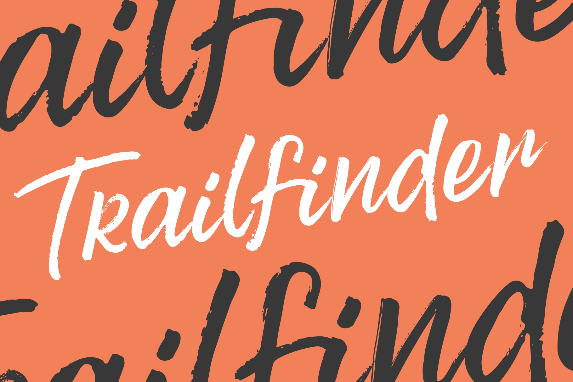 Trailfinder | A Brush Script Font example image 1