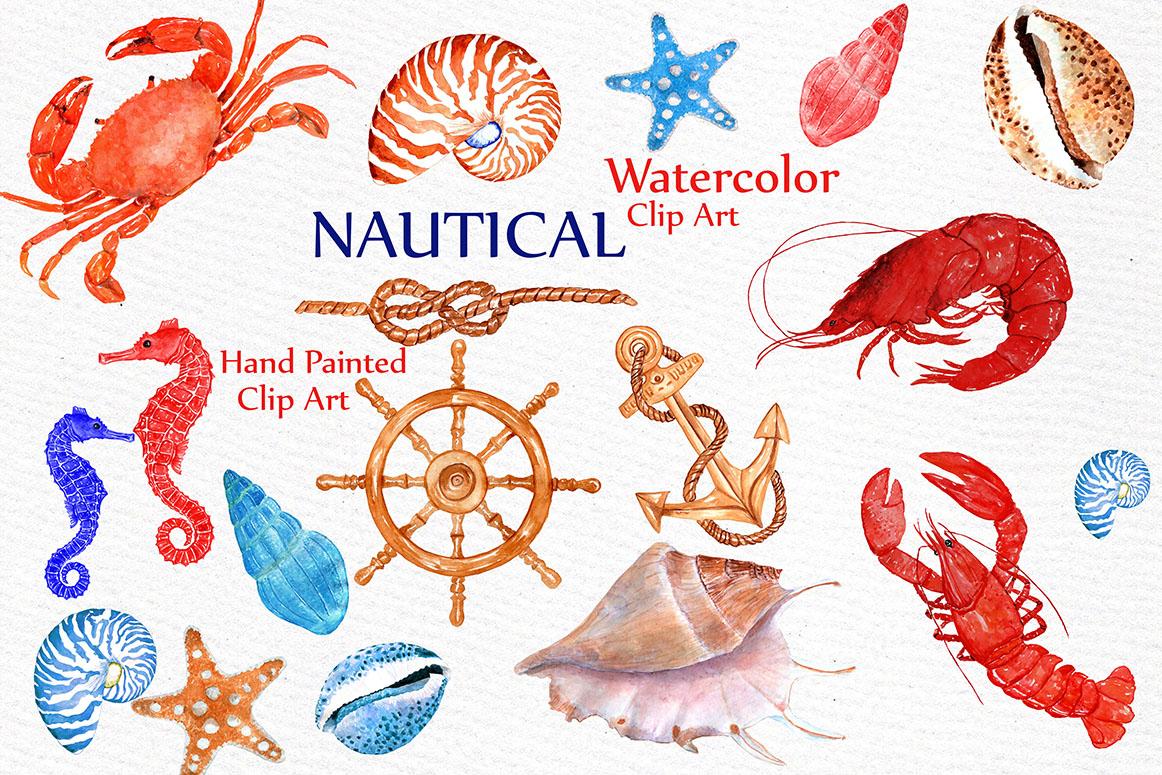 Seashell Nautical Watercolor Clipart example image 1