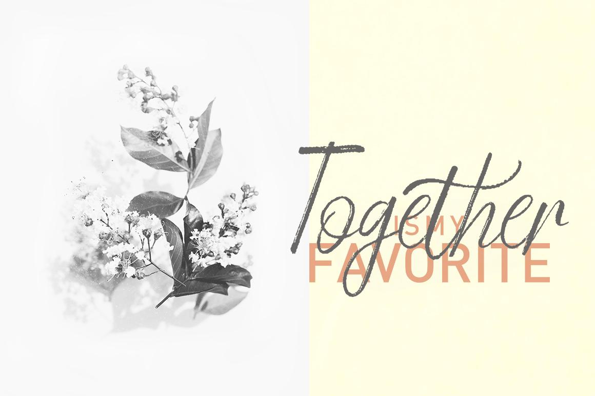 Gempita Brush example image 2