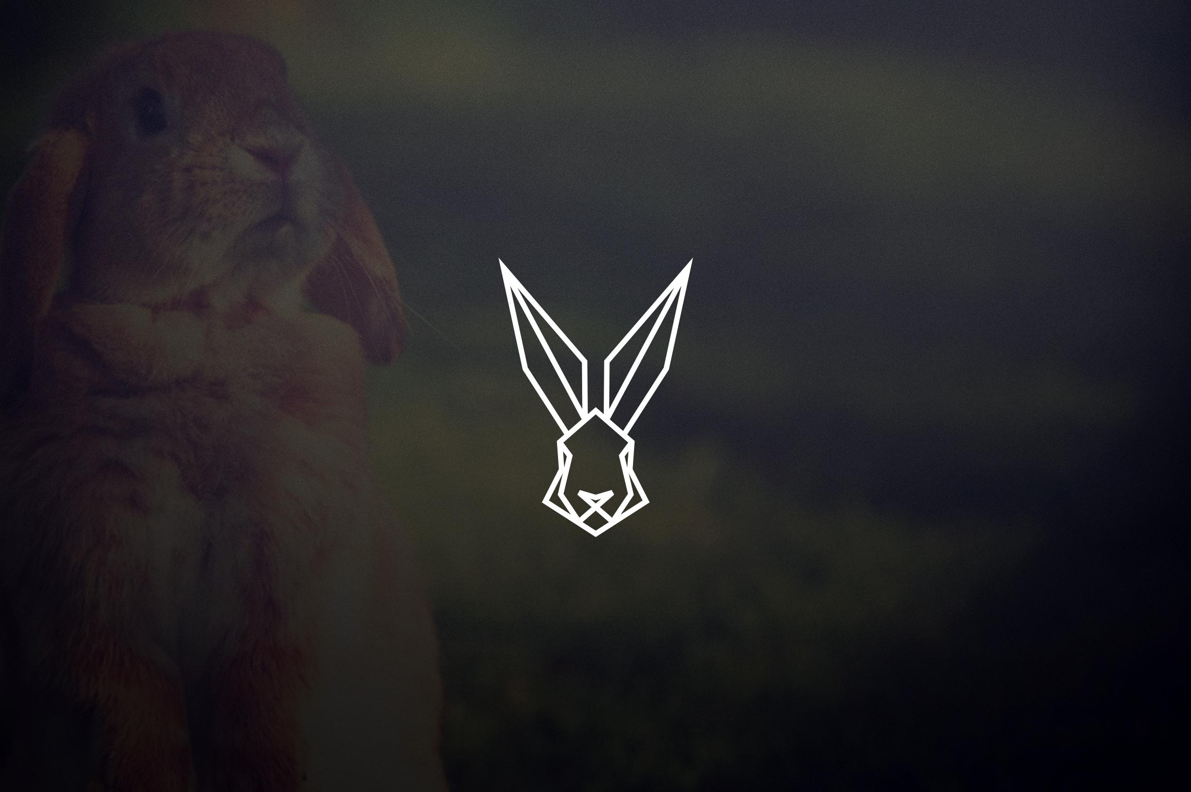 17 Geometric Animal Icons and Logos example image 5