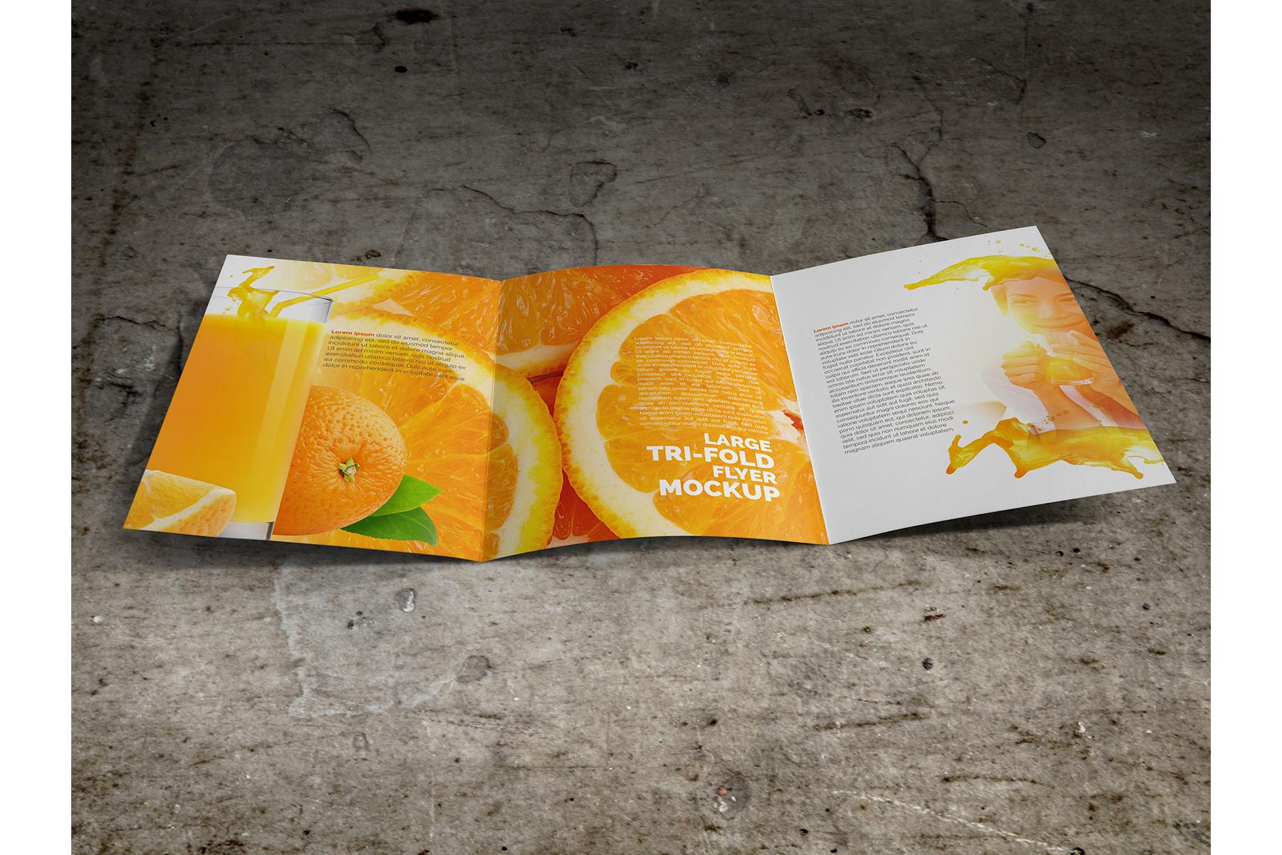 Large Trifold Brochure Mockup example image 5