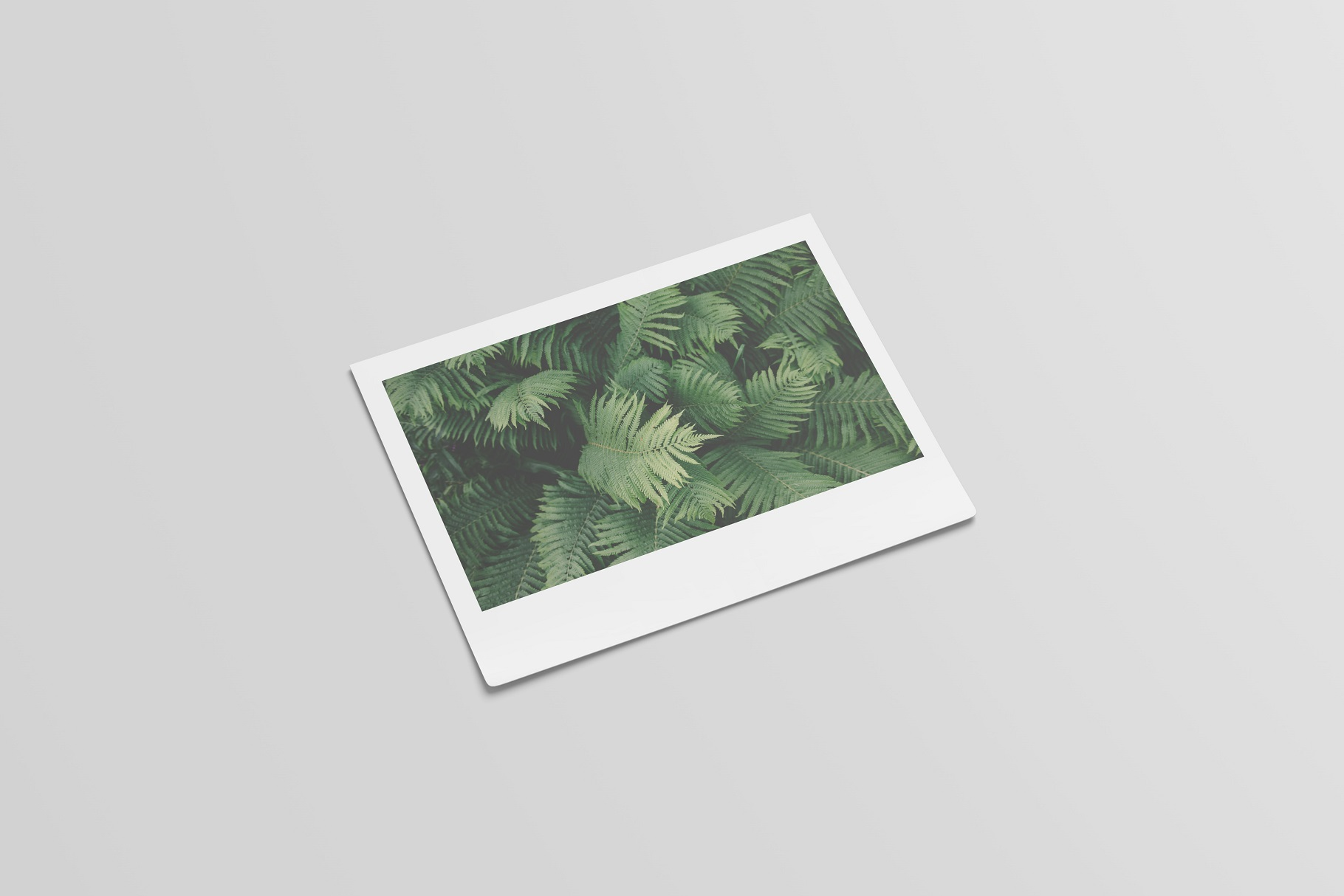 Polaroid Mockups Set example image 6