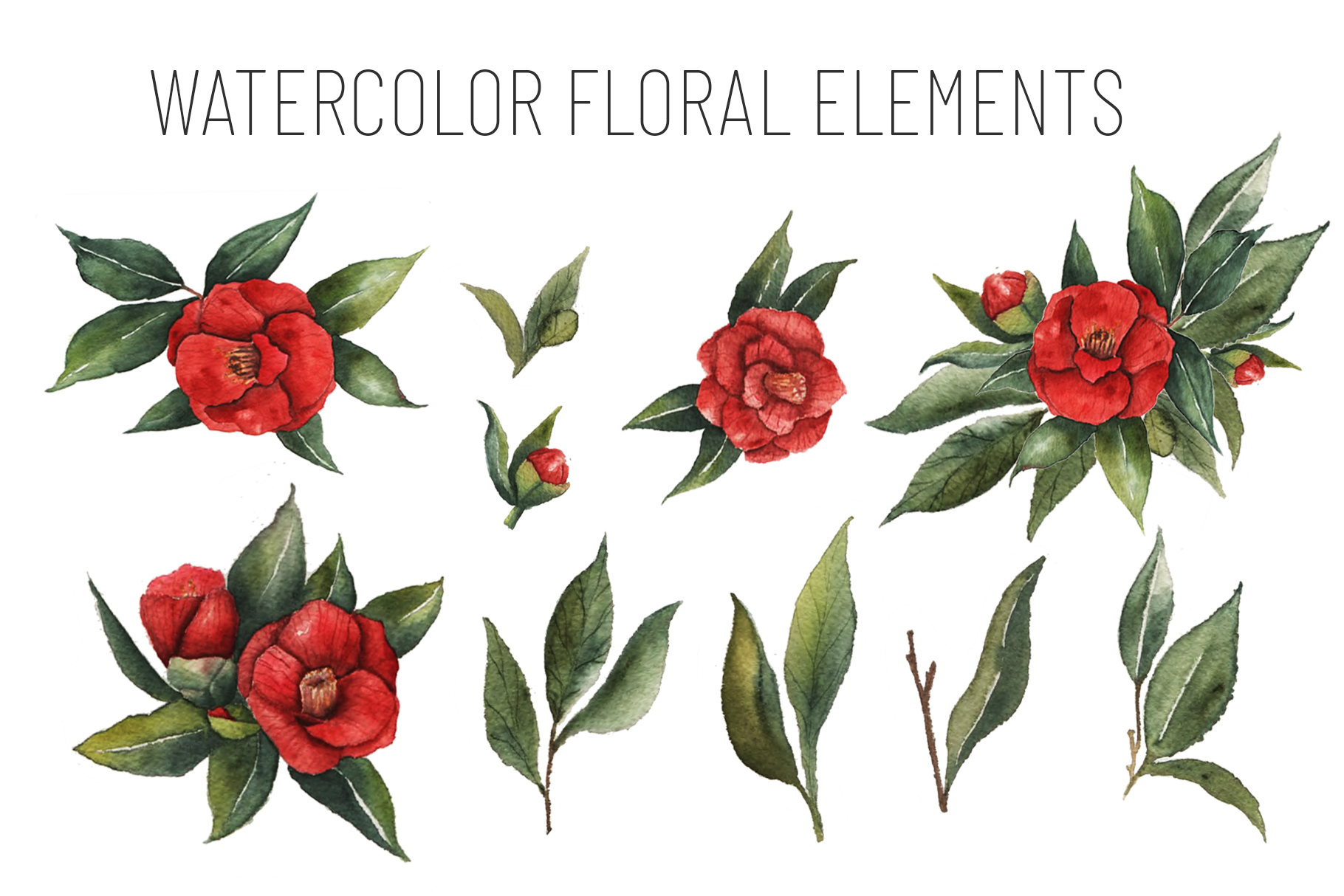 Watercolor Floral Collection example image 5