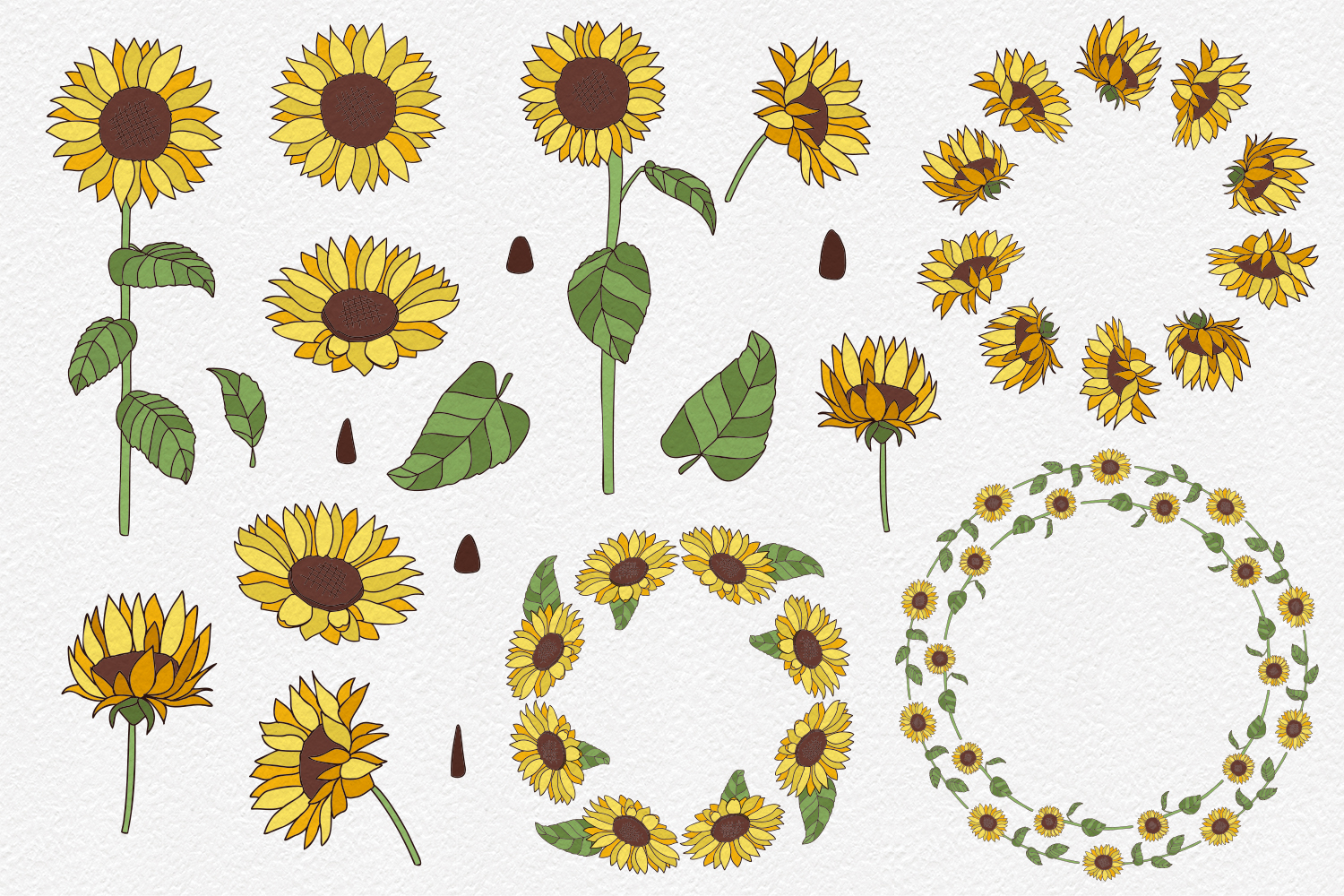 20 Sunflower Clipart Elements example image 2