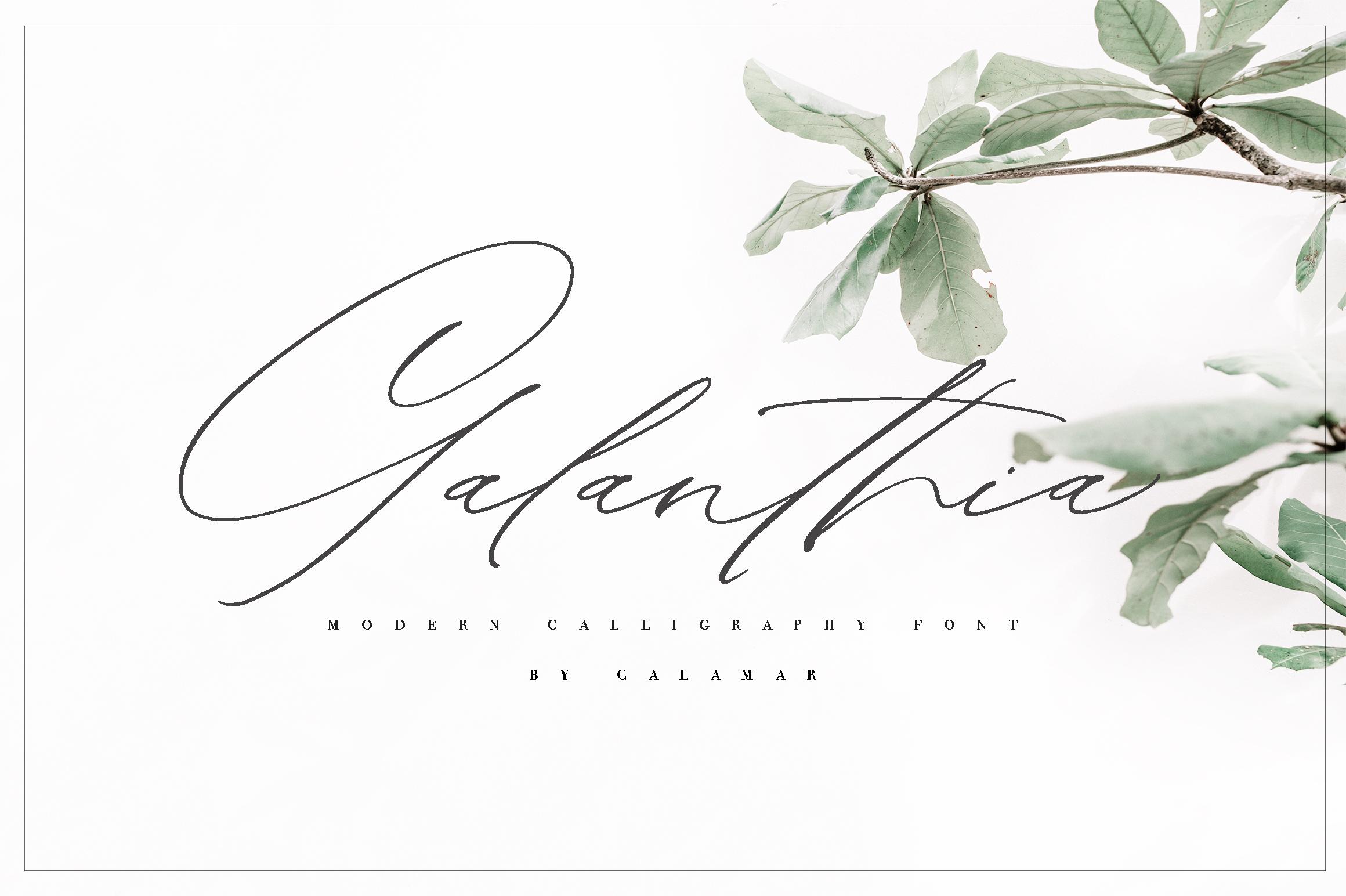 Galanthia Script example image 1