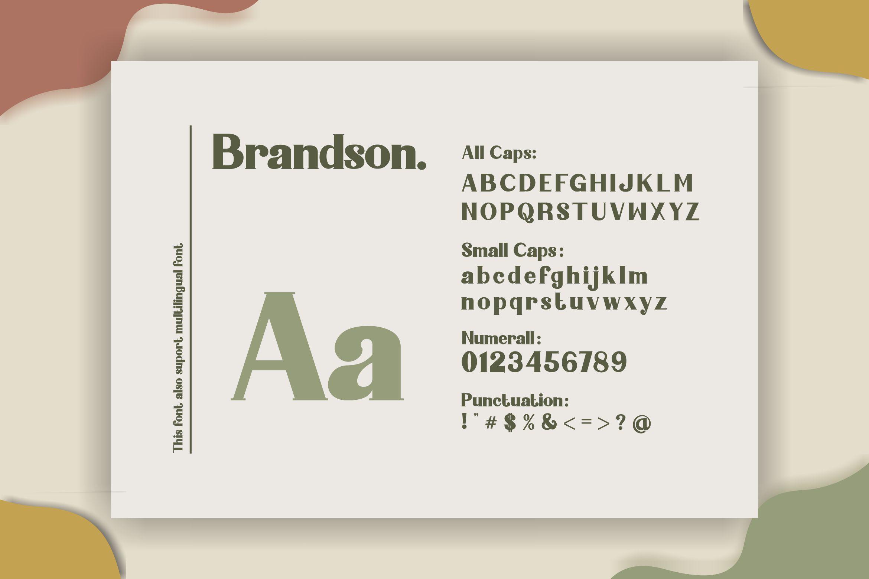 Brandson example image 6