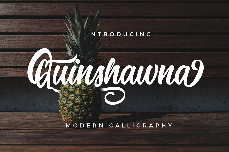 Quinshawna Font Script example image 1