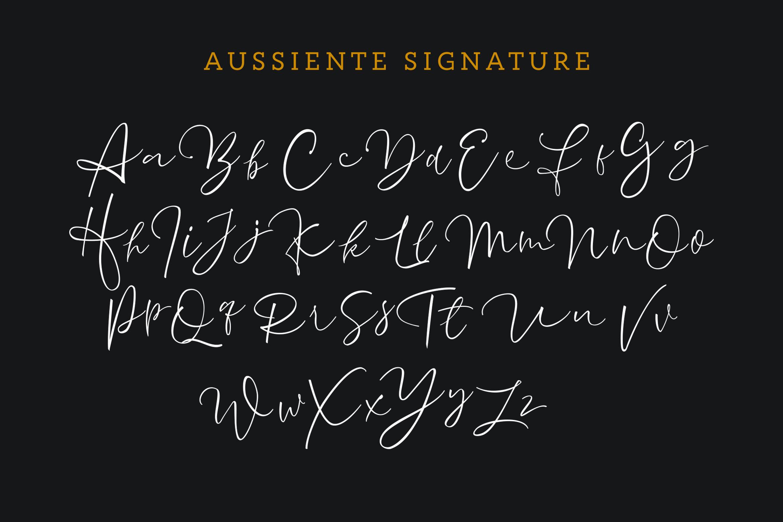 Aussiente Signature - Script example image 8