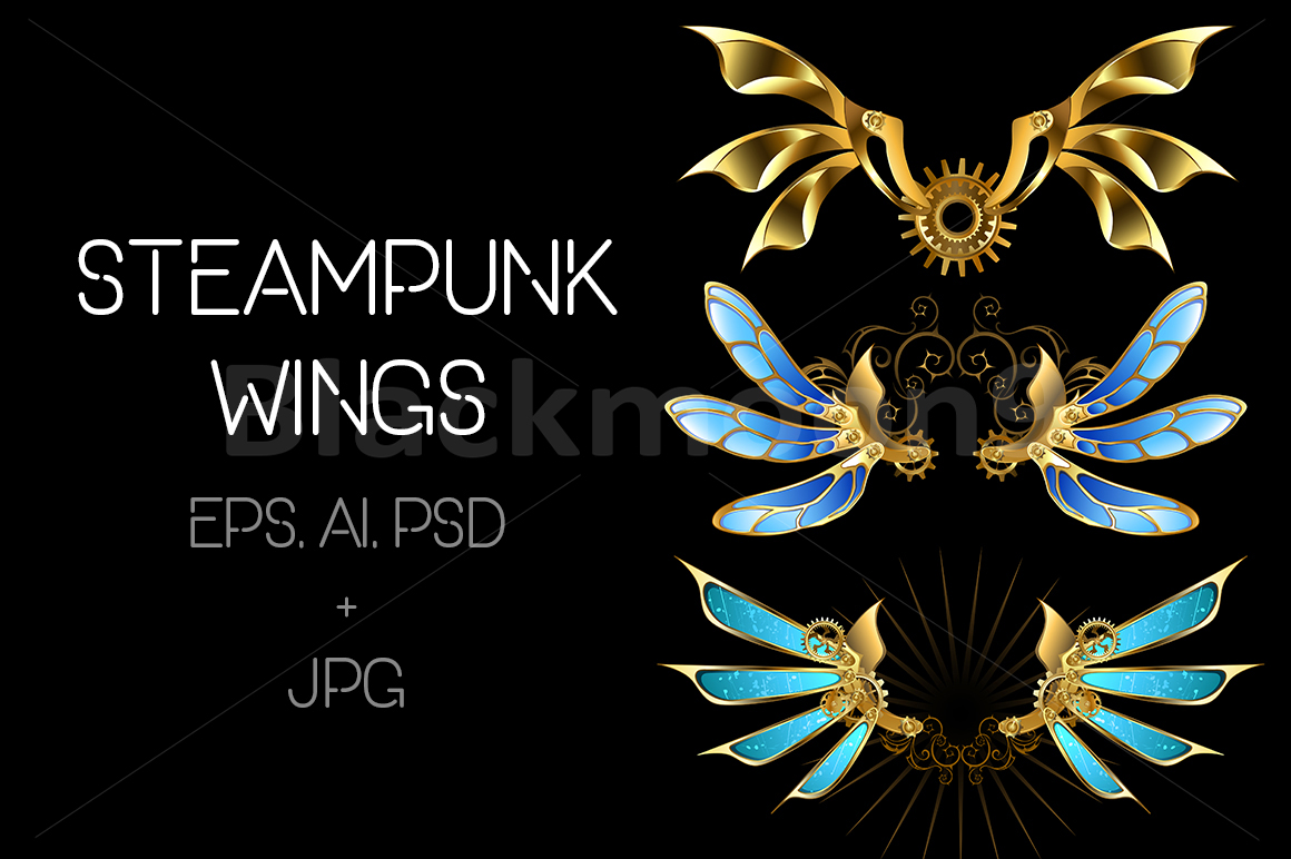 Set of Steampunk Wings example image 1