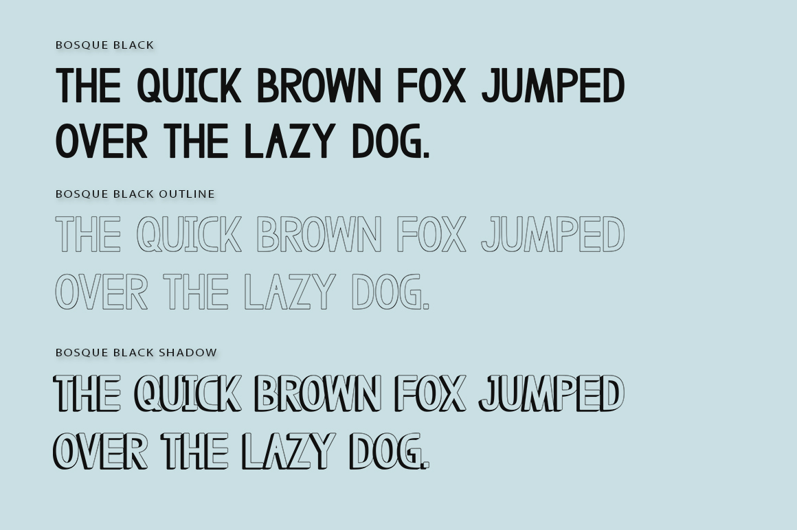 Bosque Typeface example image 6