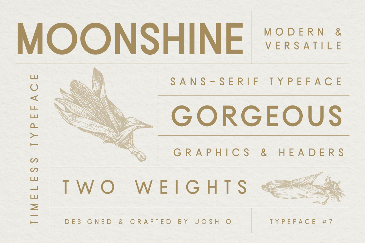 Sans Serif Typeface Collection example image 4