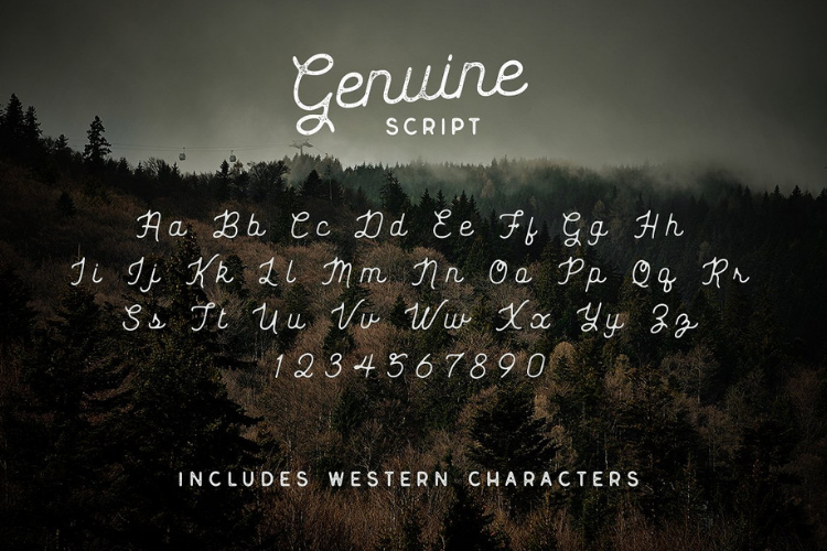 Genuine Script - Textured Type Duo example image 3