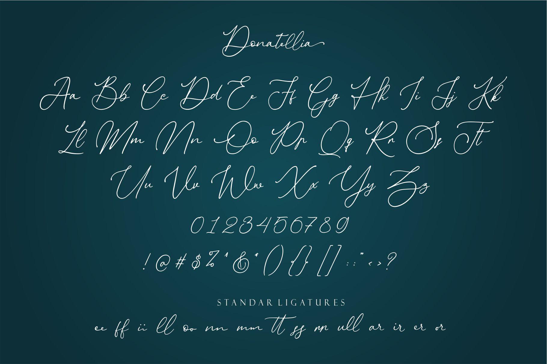 Donatellia example image 9