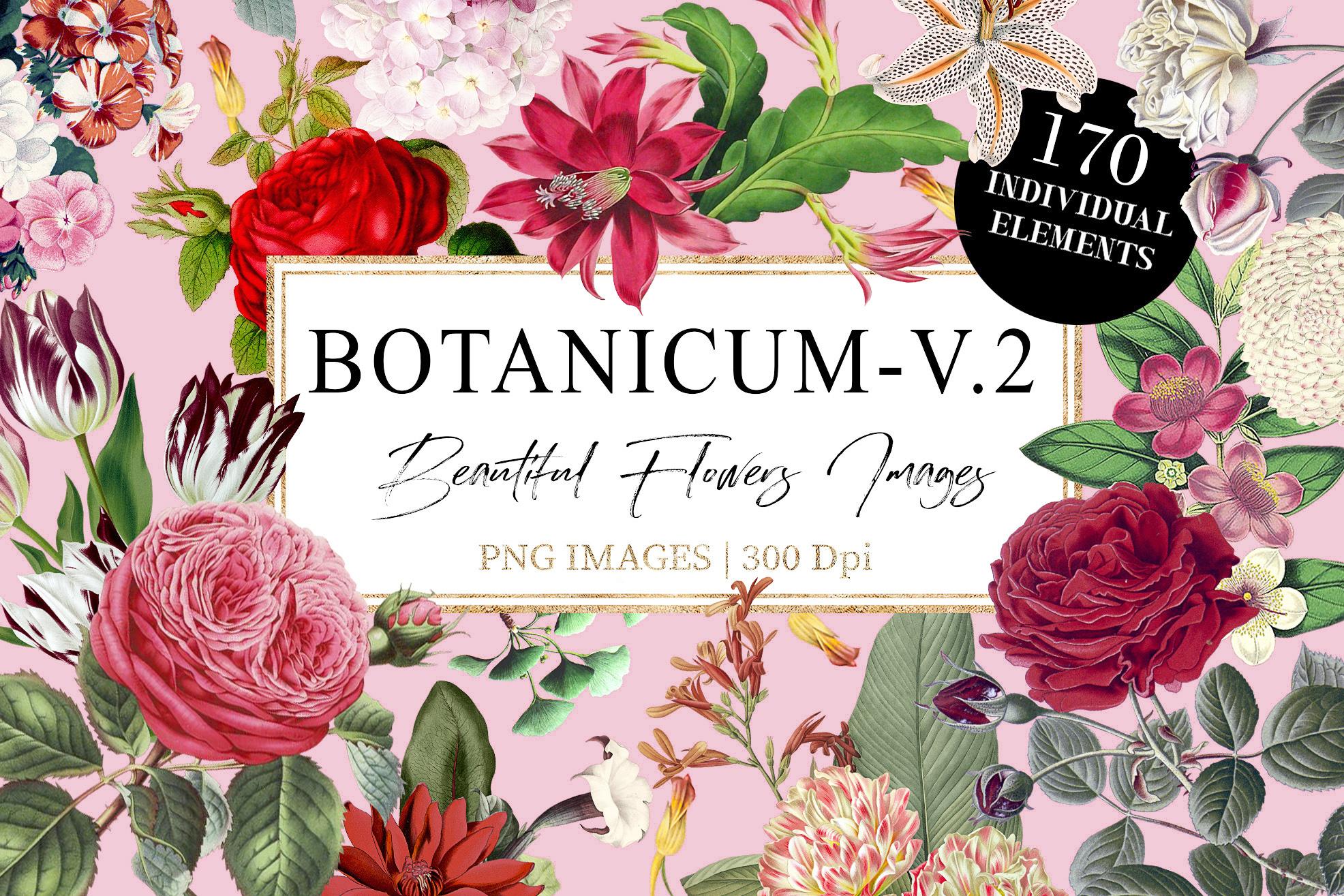 Botanicum - V.2|Elements Botanic example image 1