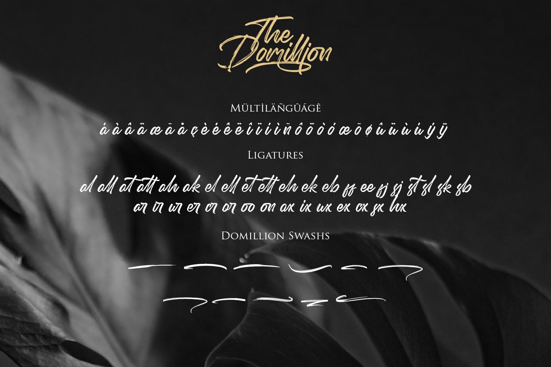 Domillion Brush Font example image 10