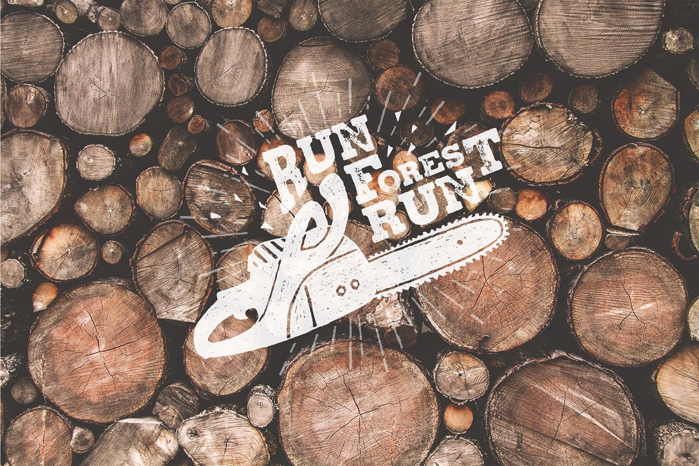 Run, Forest, Run! example image 8