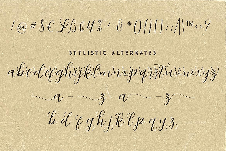 Abigaile Script Font example image 7