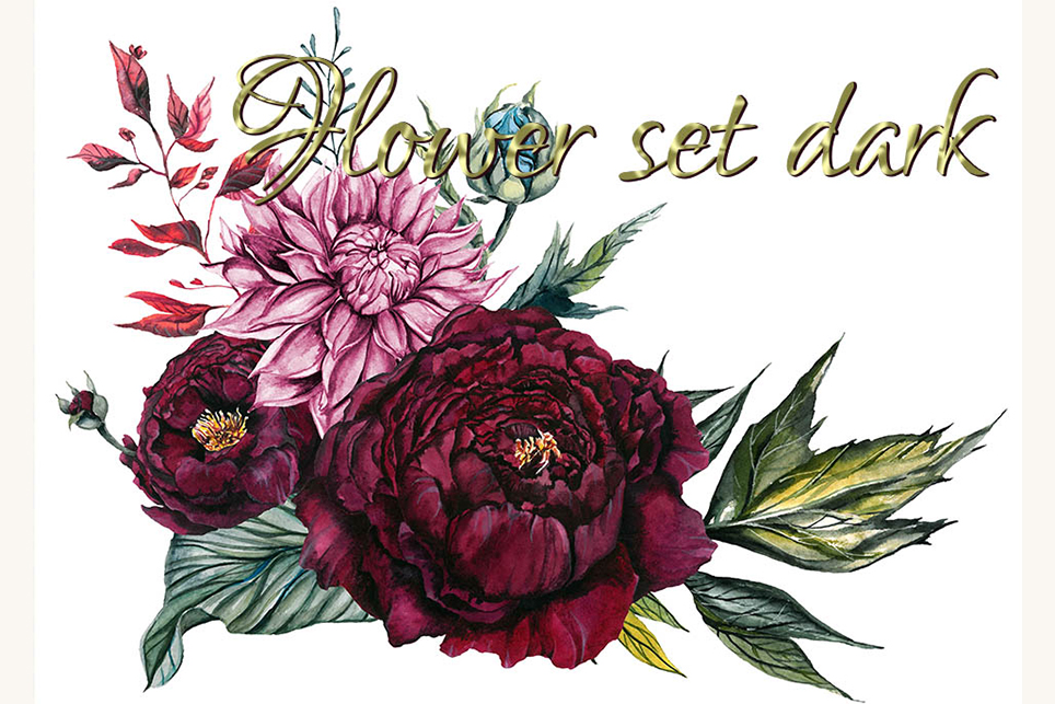 Flower set, Peony clipart, flower clipart, floral elements example image 7