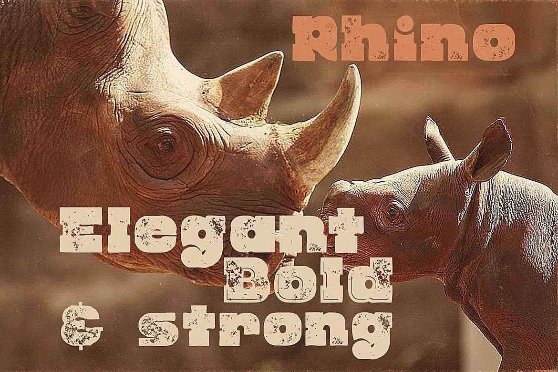 Rhino - Display Font example image 4