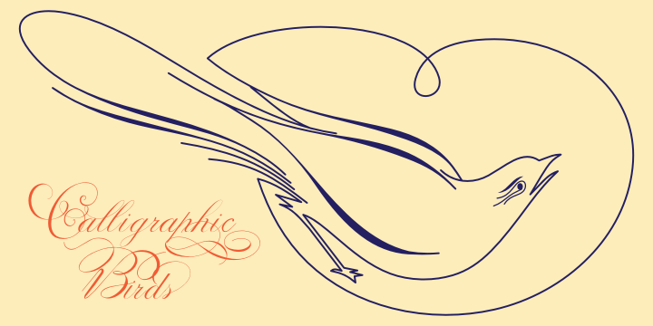 Calligraphic Birds Family Pack example image 8