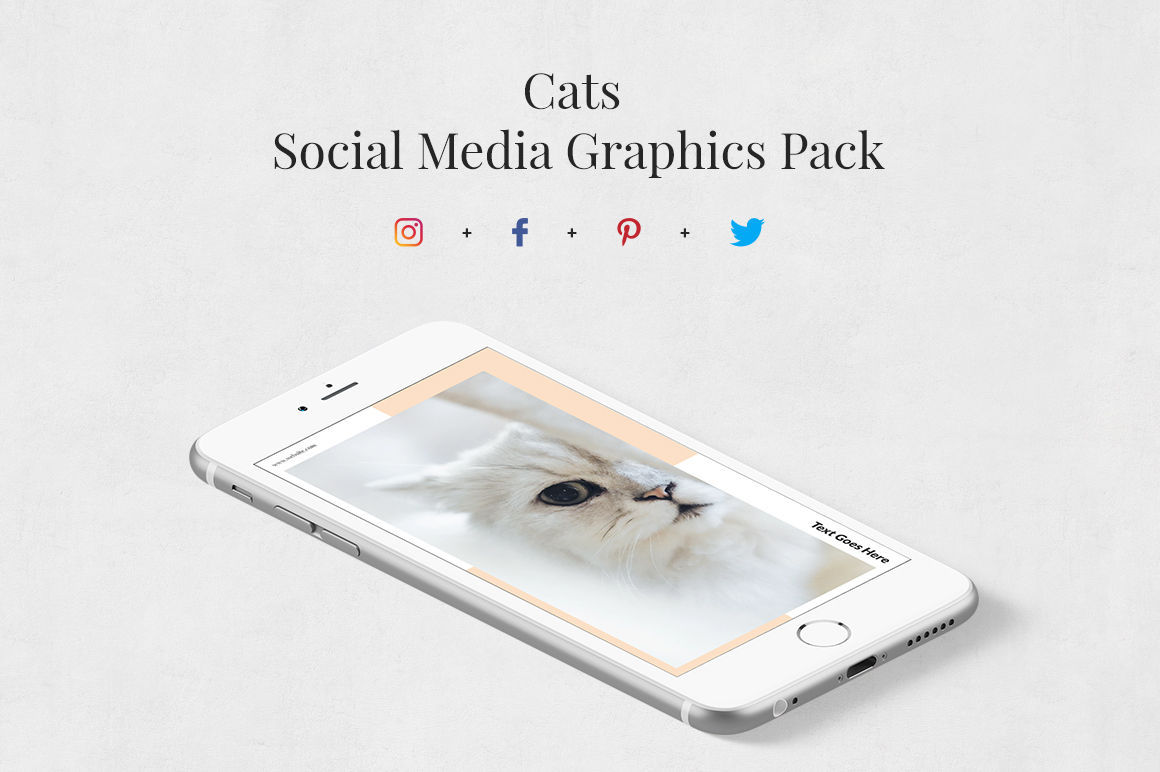 Cats Pack example image 1
