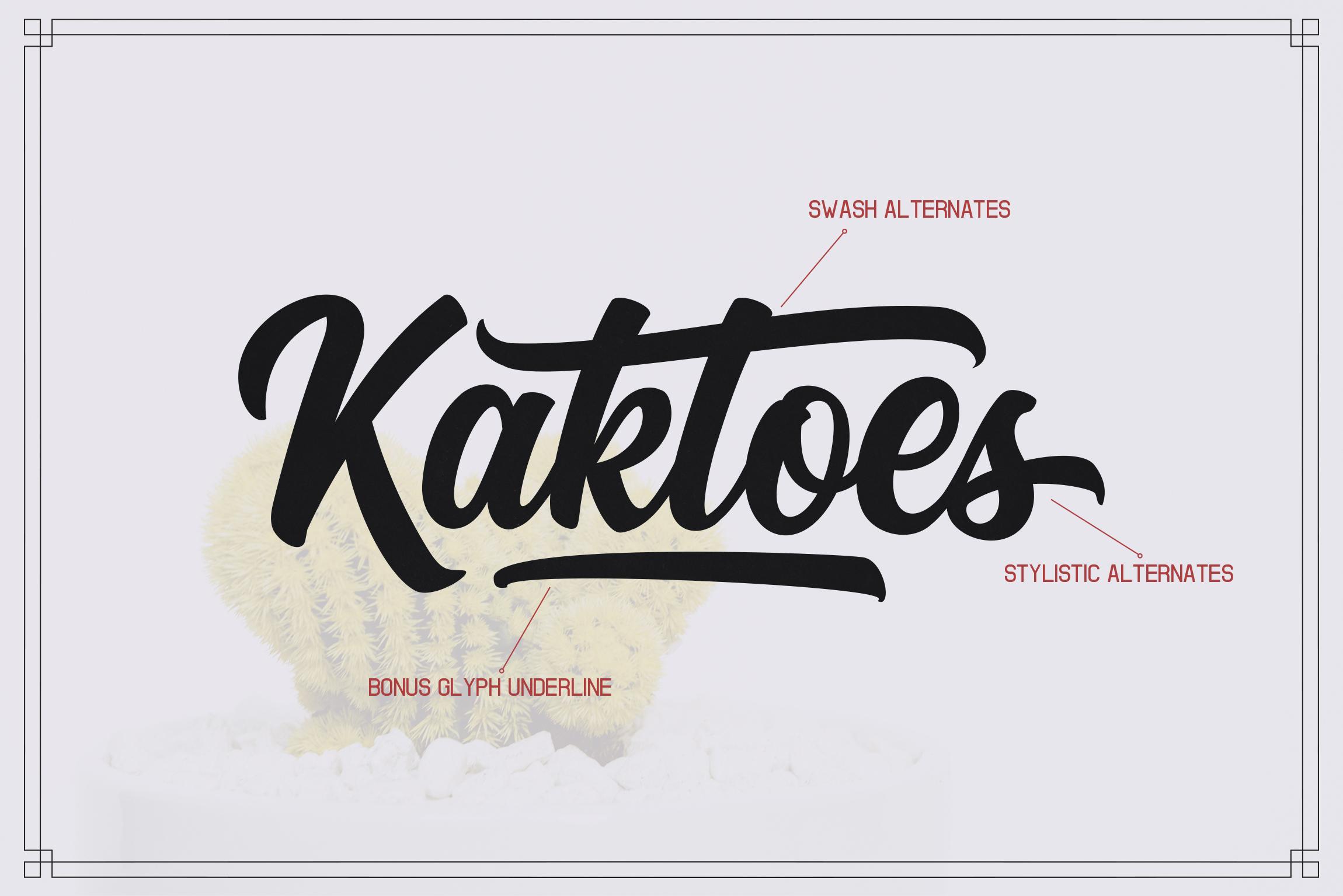 Kaktoes Script Font example image 2