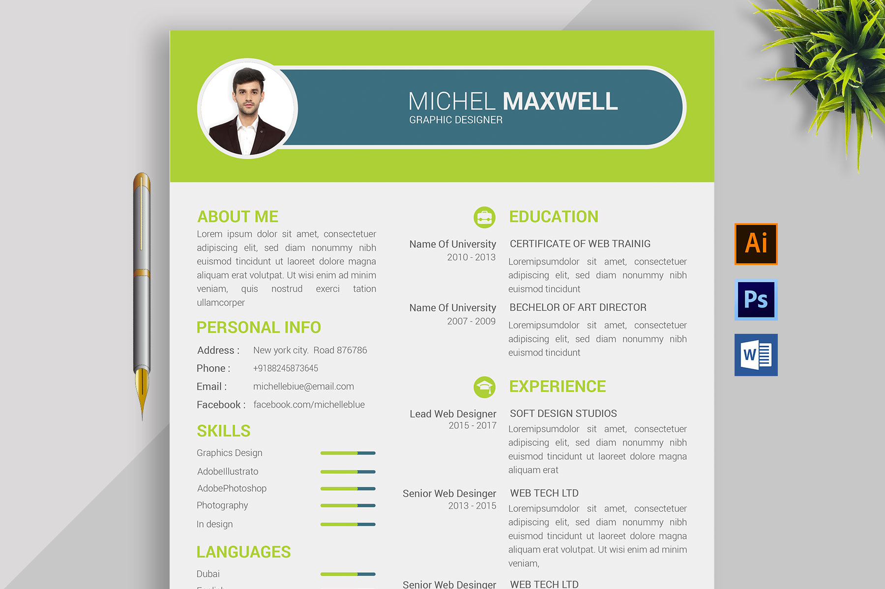 Professional Cv Resume Bonus business card Word/PSD,AI example image 1