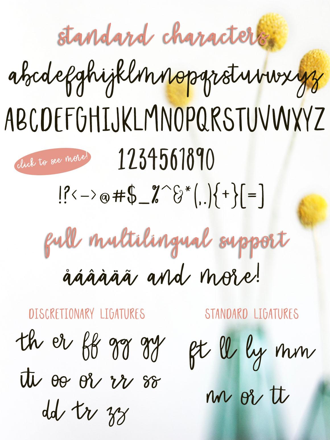 Dreamer Script + 10 FREE logos example image 4
