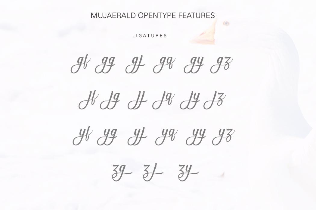 Mujaerald Font example image 10