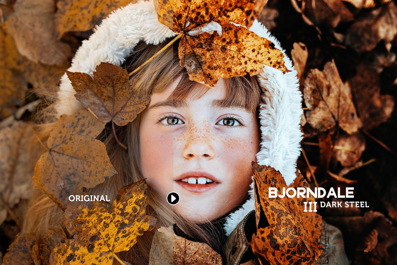 Bjorndale Presets for Lightroom & ACR, Desktop & Mobile example image 4
