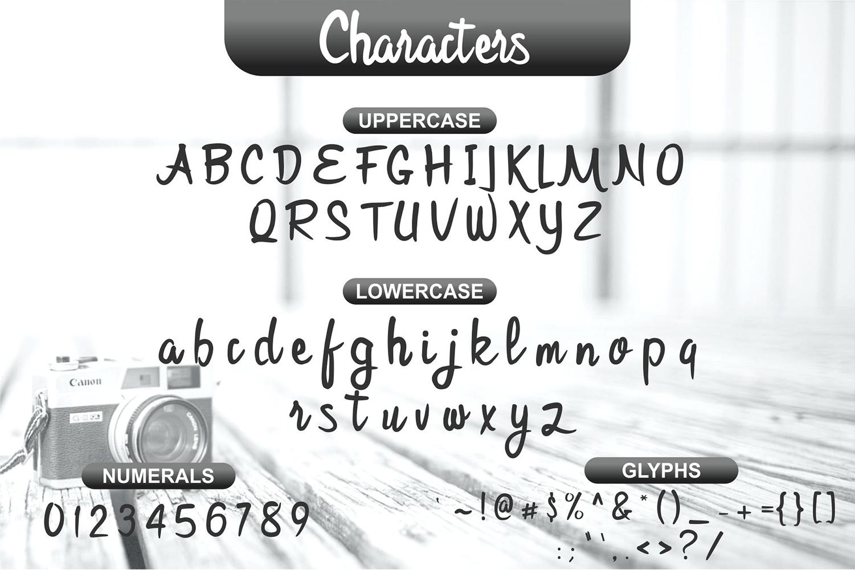 Bijak Script example image 5