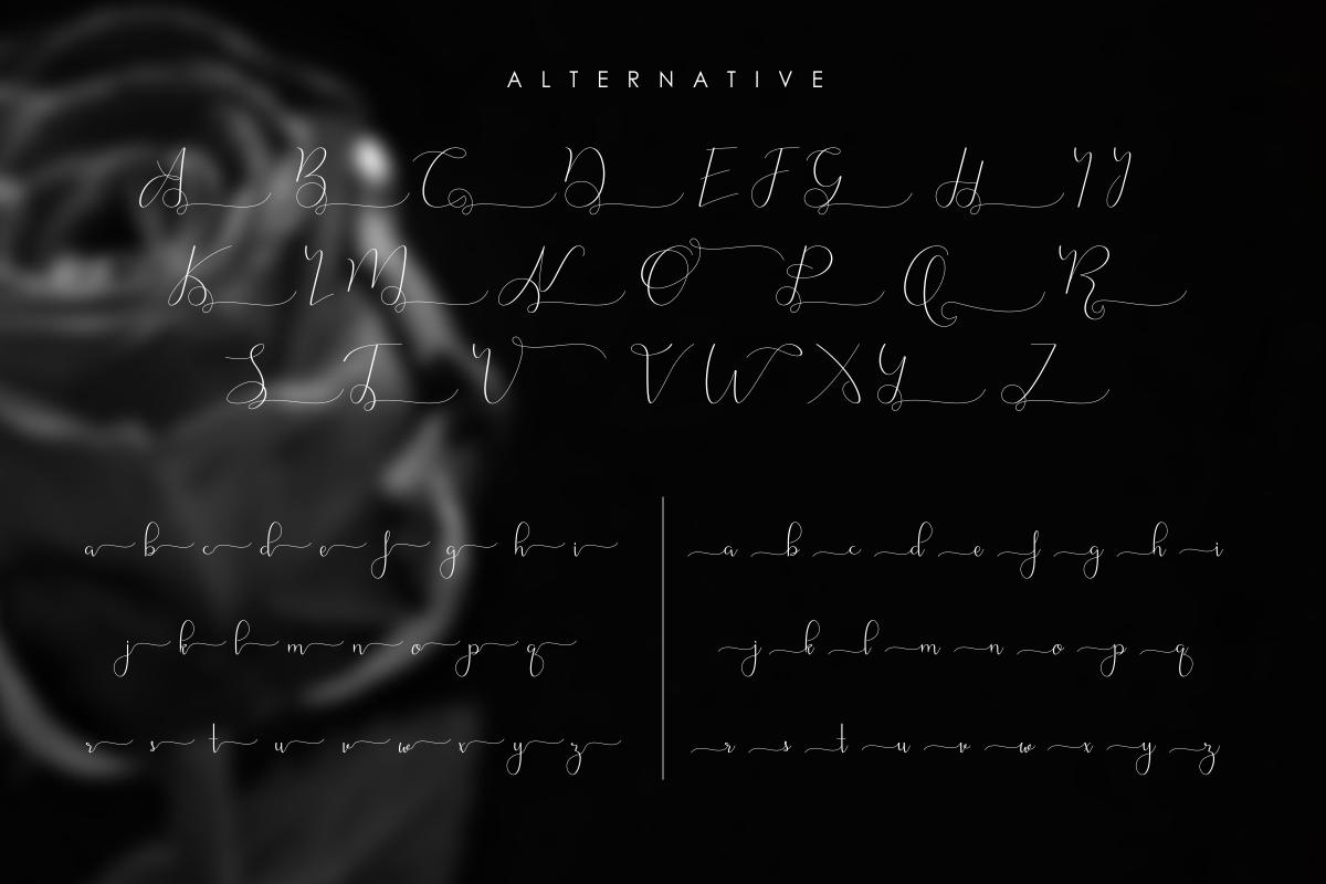 Nattallia Modern Feminine Script example image 3