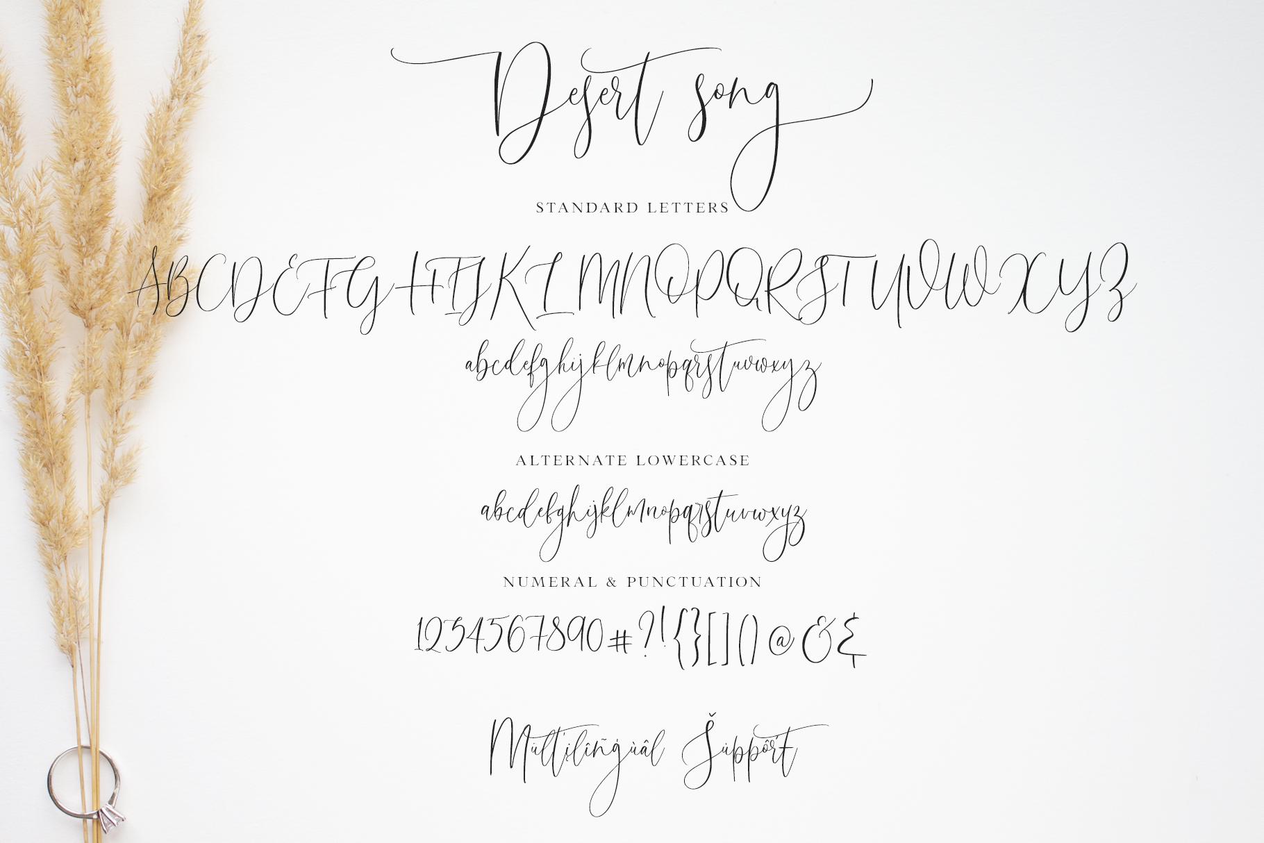 Desert Song | Calligraphy Script example image 15