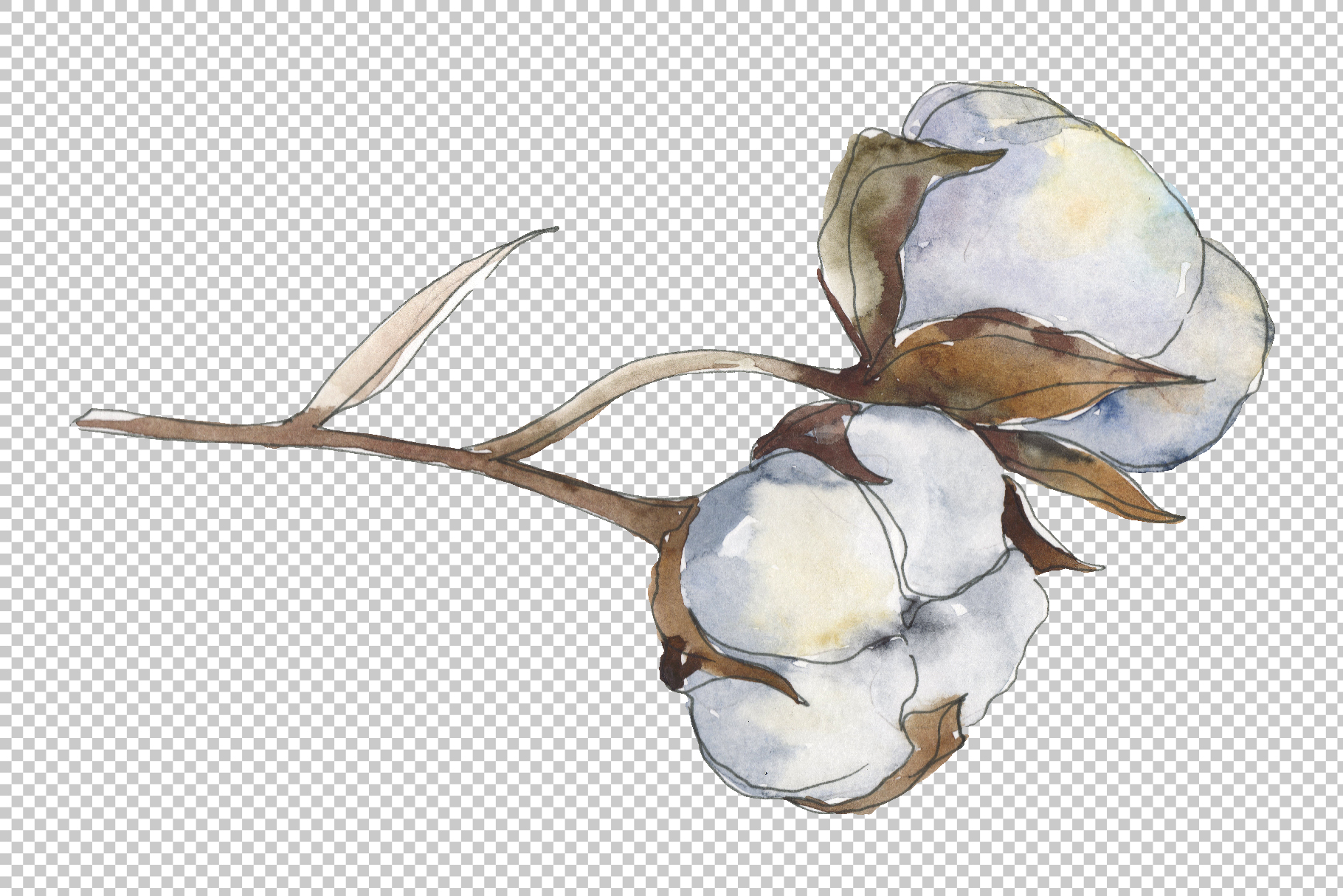 Cotton Watercolor png example image 3