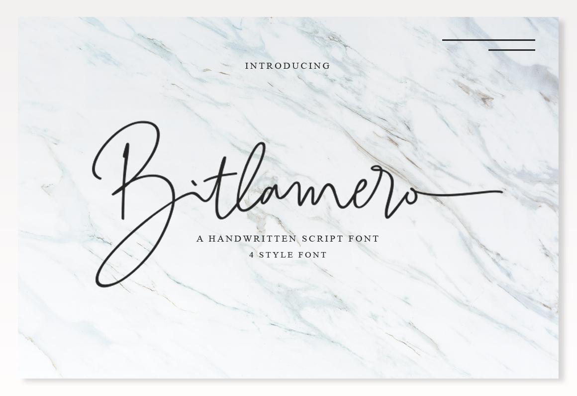 Bitlamero Script example image 1