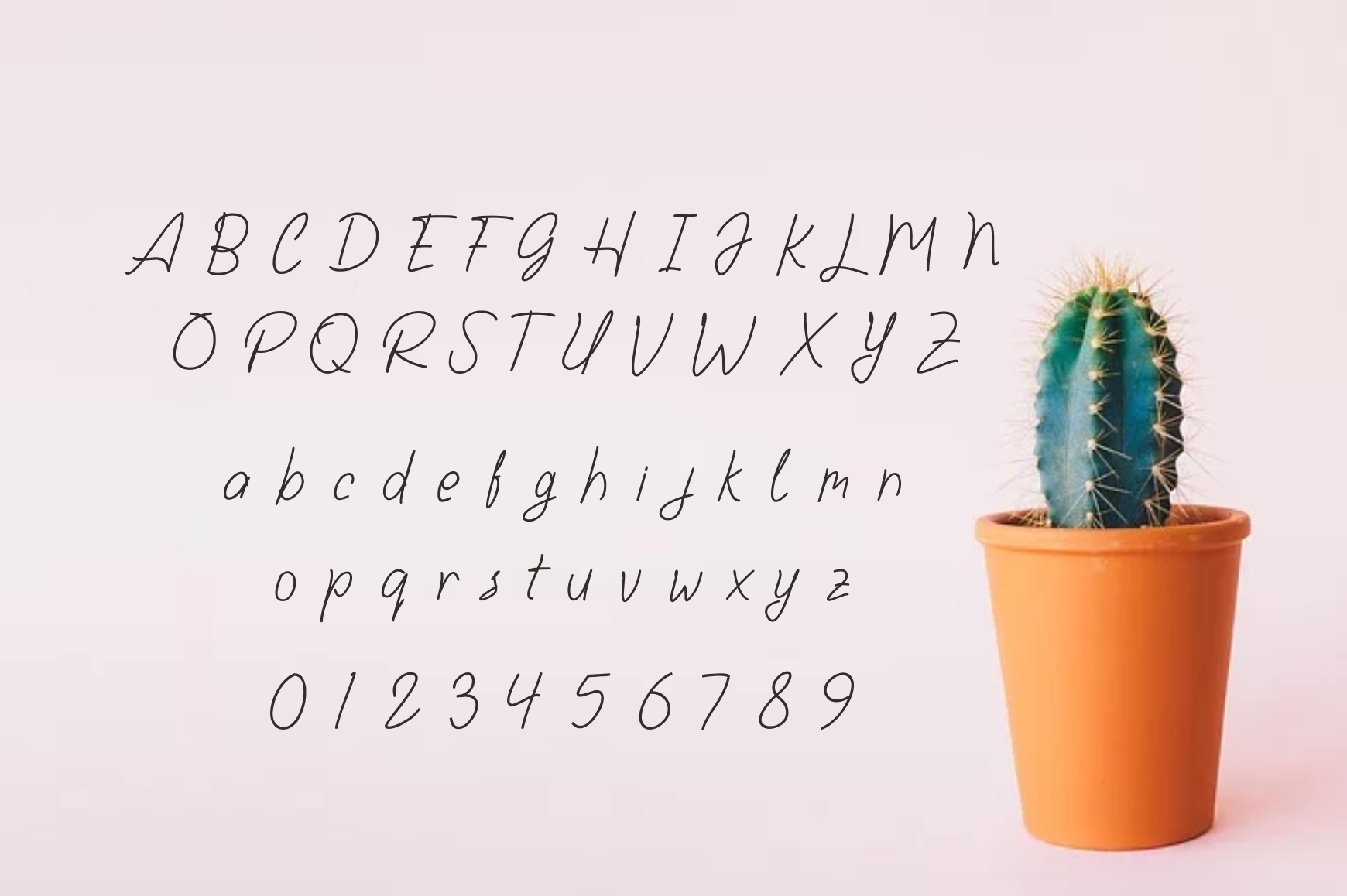 Larasaky | Handwriting Font example image 3