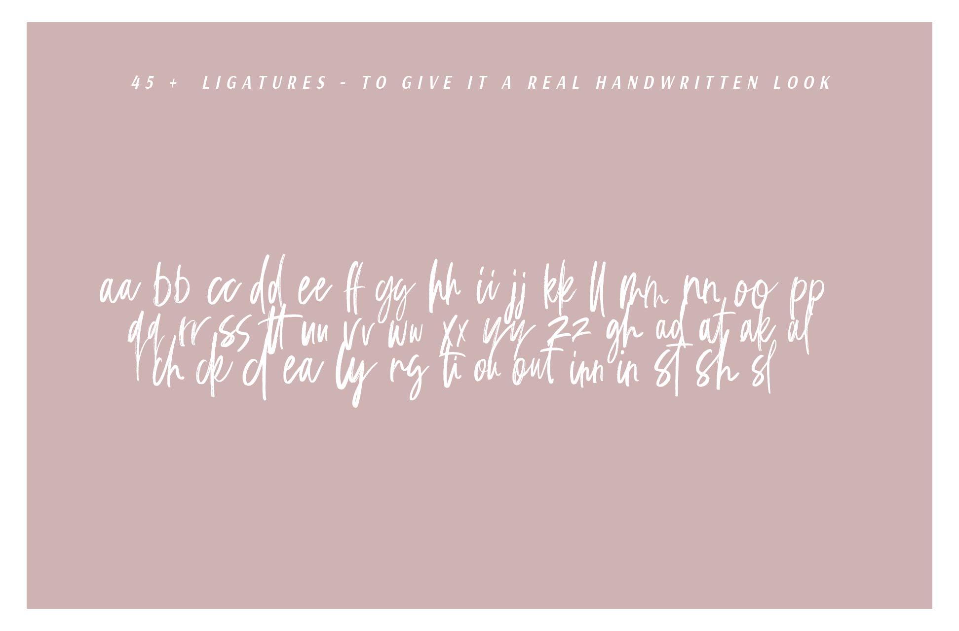 C'est La Vie   Font + Extras example image 7